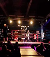 Musikaldarsteller bei Fight Night